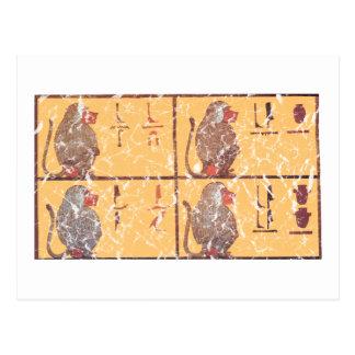 babouins cartes postales