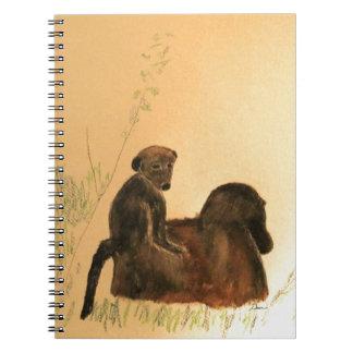 Babouins de mère et de bébé - primats de singes de carnet
