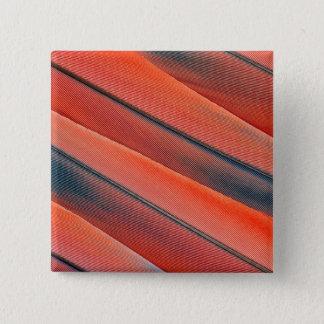 Badge Abrégé sur rouge plume d'ara
