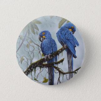 Badge Ara de jacinthe juste pour vos cadeaux spéciaux