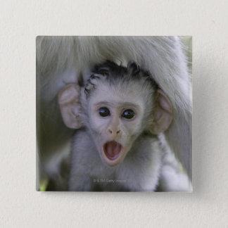 Badge Babouin de bébé sous sa mère