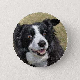 Badge Border collie