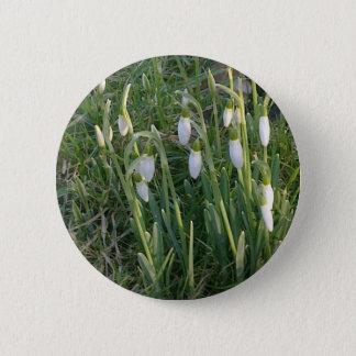 Badge Bouton de perce-neiges