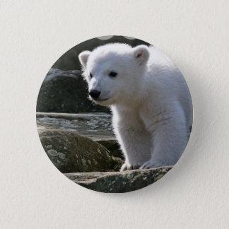 Badge Bouton d'ours blanc de bébé