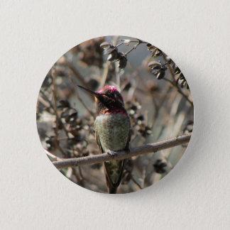 Badge Bouton du colibri d'Anna