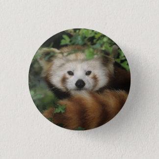 Badge Bouton - panda rouge