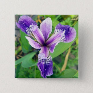Badge Bouton pourpre d'iris