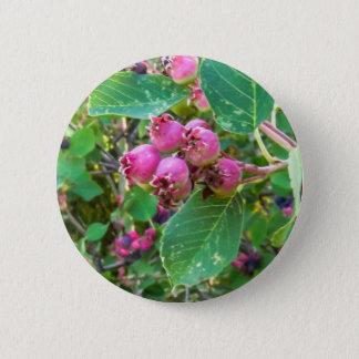Badge Bouton rond de pouce de ¼ de Saskatoons 2