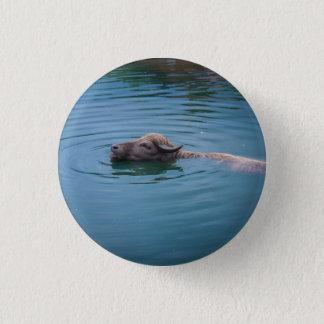 Badge Buffalo d'eau de natation