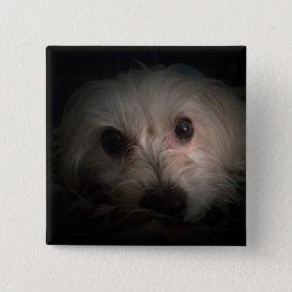 Badge Carré 5 Cm Bouton mignon de délivrance de chiot de chien de