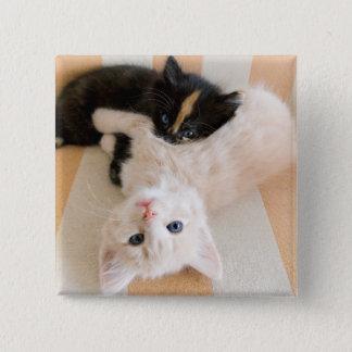 Badge Carré 5 Cm Chatons blancs et noirs