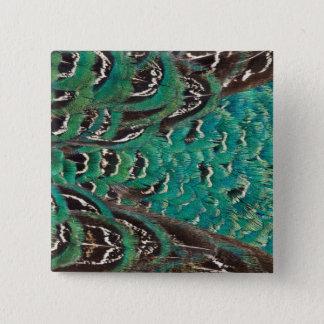 Badge Carré 5 Cm Détail de plume de faisan de turquoise