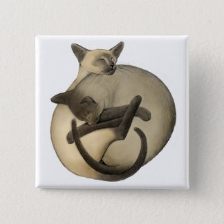 Badge Carré 5 Cm Pin siamois somnolent