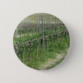 Badge Champ nu de vignoble en hiver. La Toscane, Italie
