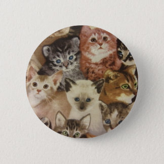 Badge Chatons