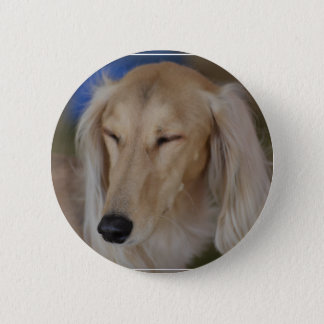 Badge Chien somnolent de Saluki