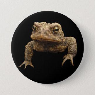 Badge Crapaud américain