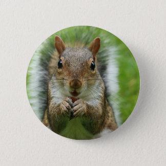 Badge écureuil