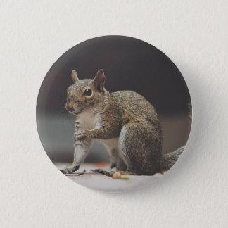 Badge Écureuil pelucheux