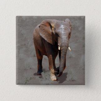 Badge Éléphant africain