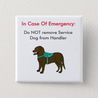 Badge Entretenez le bouton 1 de GLACE de chien