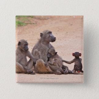 Badge Famille de babouin se reposant sur la terre