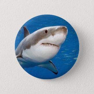 Badge Grand requin blanc