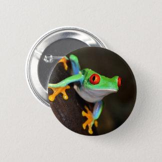Badge Grenouille tropicale de Red Eye - Agalychnis