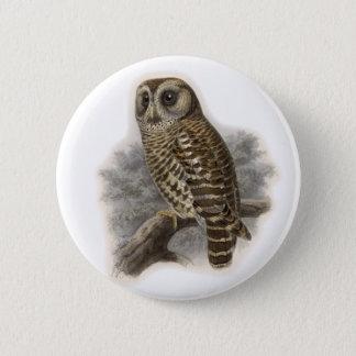 Badge Hibou de Brown