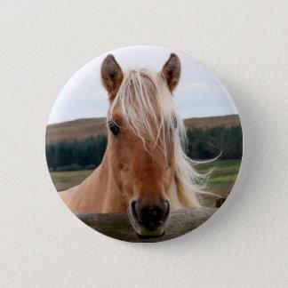 Badge Horsie