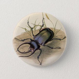 Badge Insectes vintages et insectes, scarabée de