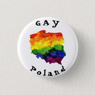 Badge Insigne GAI de la Pologne