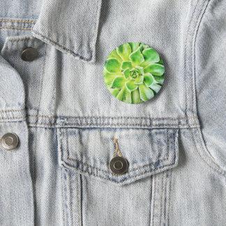 Badge Insigne succulent