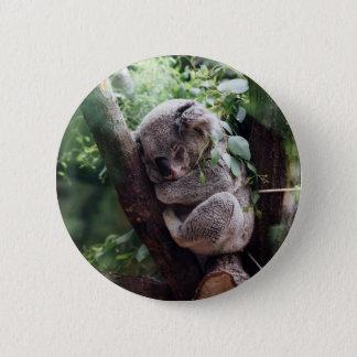 Badge Koala de bébé de sommeil