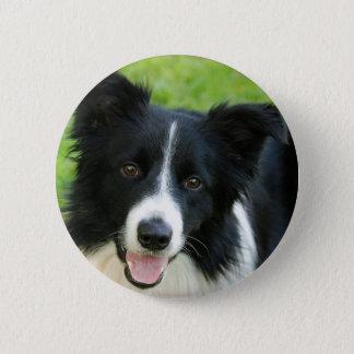 Badge Le chien de border collie ajoutent l'animal
