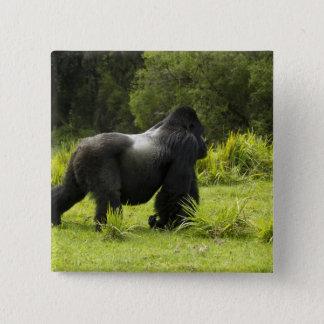 Badge Le Rwanda, parc national de volcans. Montagne 2