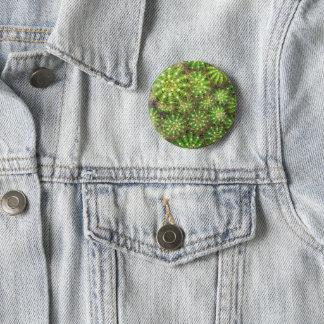 Badge Les cactus se ferment vers le haut de l'insigne