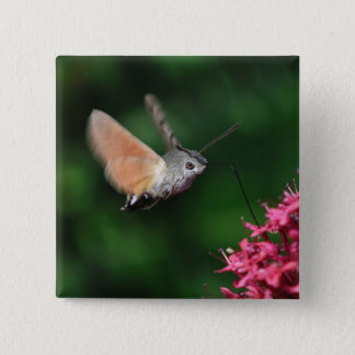 Badge Mite de colibri planant