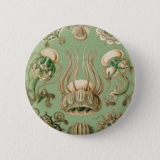 Badge Narcomedusae d'Ernst Haeckel