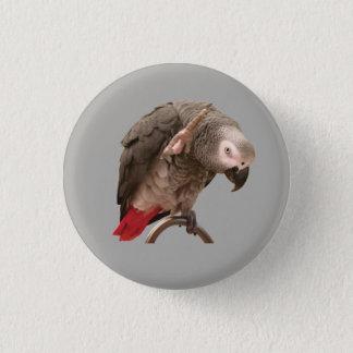 Badge Ondulation de perroquet d'Einstein