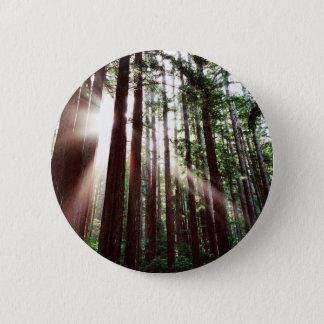 Badge Parc national de séquoias