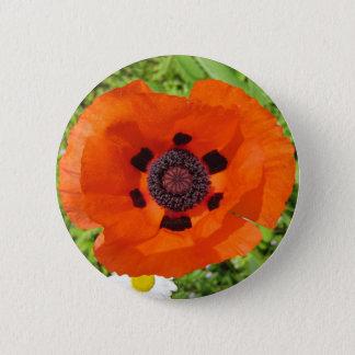 Badge Pavot