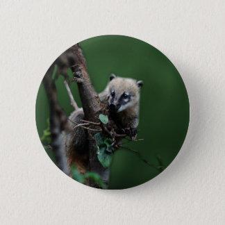 Badge Petit coati de vauriens - lémur