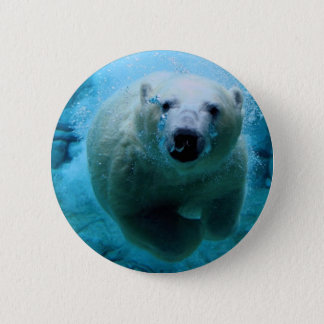 Badge polaire-ours