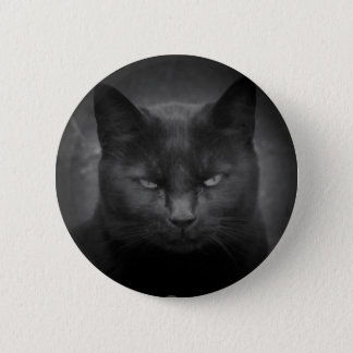 Badge Projecteur fou de chat noir