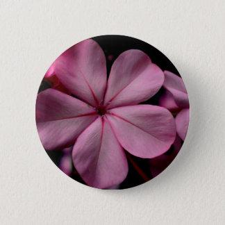 Badge Quartz rose de ~ de bourdonnement de plumbago de
