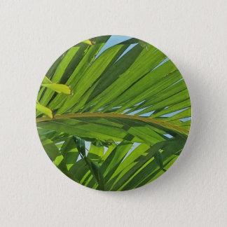 Badge Rêves de palmier