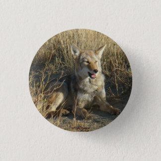 Badge Rond 2,50 Cm Pose du coyote R0018