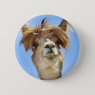 Badge Rond 5 Cm Alpaga fol de cheveux