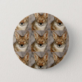 Badge Rond 5 Cm boîtes de coyotes